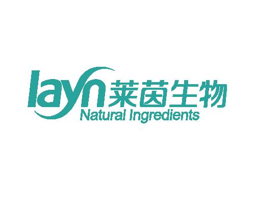 莱茵生物网站设计