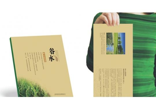 <b>上海广告策划公司:策划的具体内容有哪些?</b>